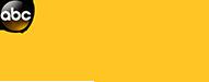 abd america this morning logo